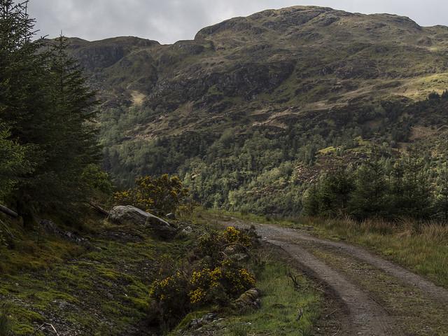 Path Through the Hills, Olympus E-M5, LUMIX G VARIO 45-150/F4.0-5.6