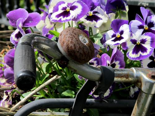 [Flower Bike]
