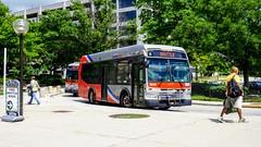 WMATA Metrobus 2012 Orion VII 3G Diesel #3044