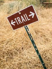 Snail's trail