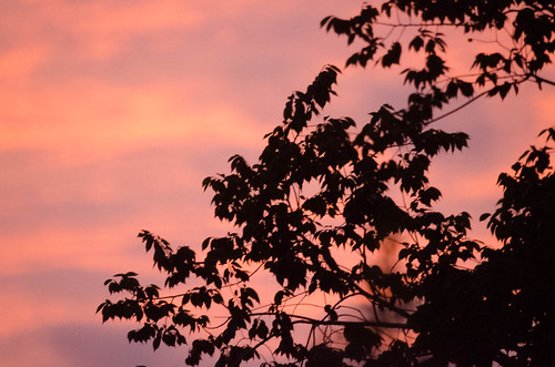 nikon 7000 500mm f8 sunset houston texas tx orange sky