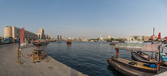 Dubai Waterfront Panorama
