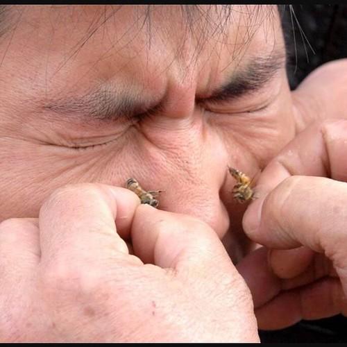 الرفاع بوكواره أجود انواع العسل الفاخر اصلي100%100عود كمبودي وتمور فاخره أعشاب تخسيس والعناية بالجسم 33000773/77082323