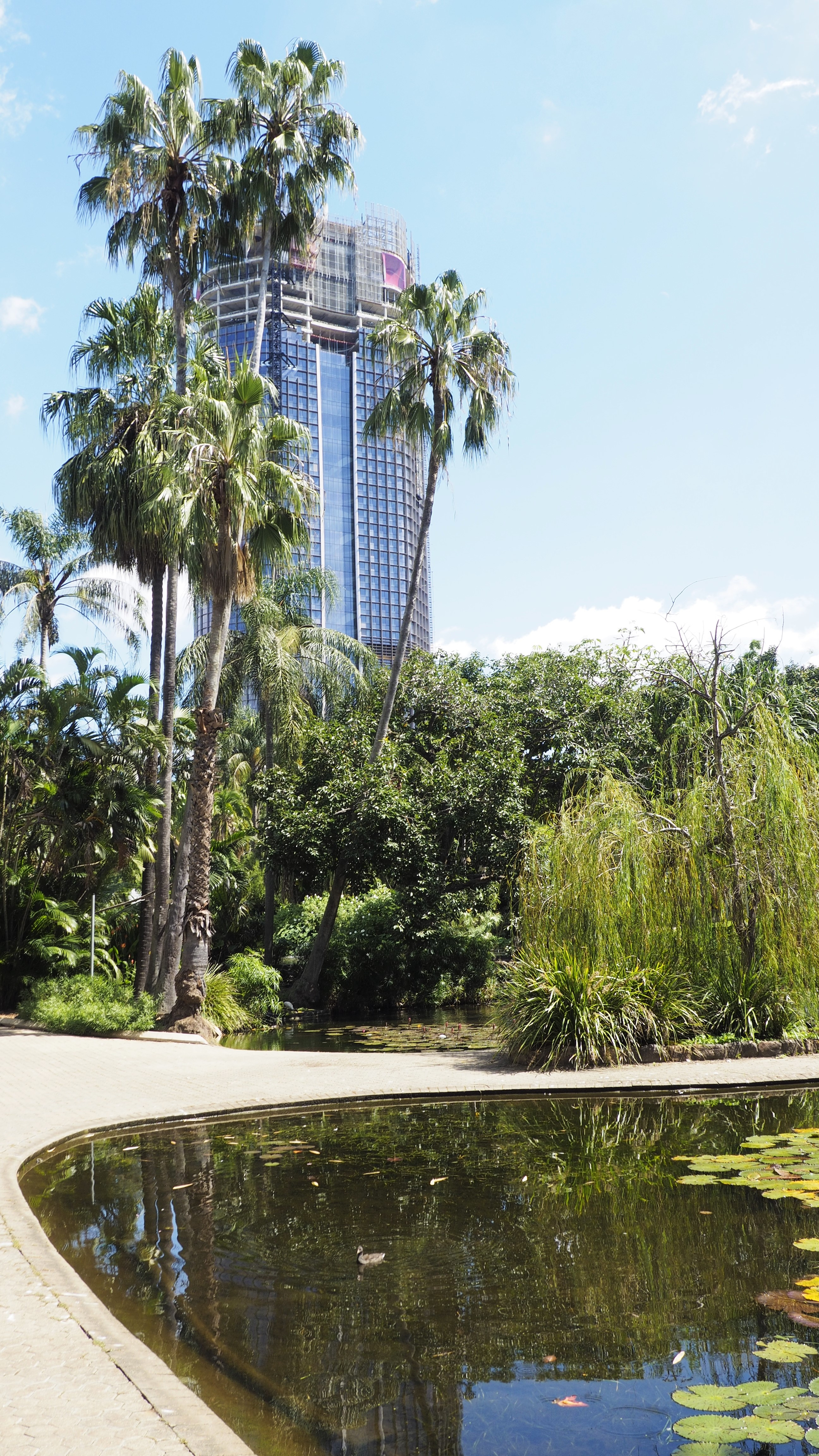 City_Botanic_Gardens_Brisbane_1