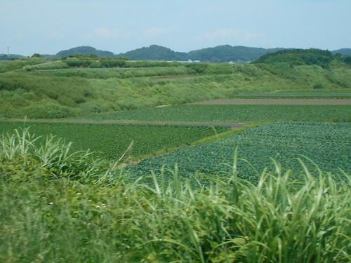 jp-tour-arret 3 (2)