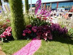 show garden pink