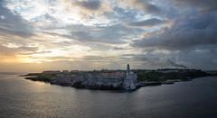 Havana Castillo