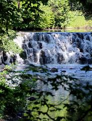 Bronx River....(Bronx Zoo)