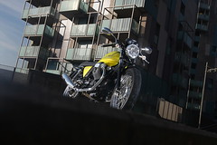 Moto-Guzzi V7 750 Cafe Classic 2010 - 12