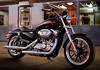 Harley-Davidson XL 883 L Superlow 2015 - 21
