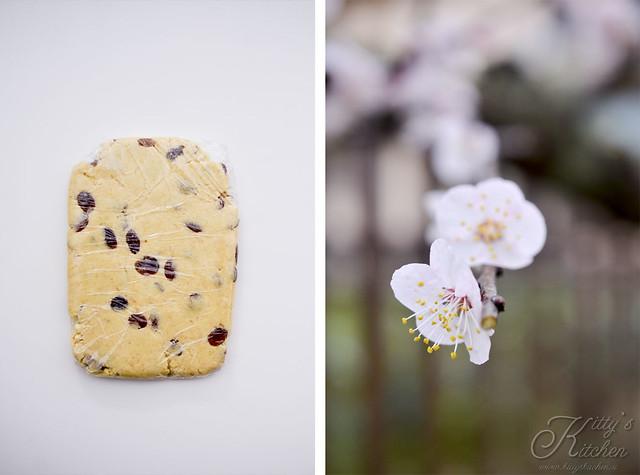 biscotti in padella_ (4b)
