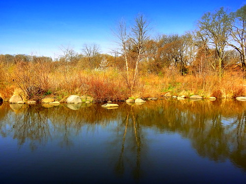 newyork brooklyn dmitriyfomenko image sky clouds prospectpark spring trees rocks reflection