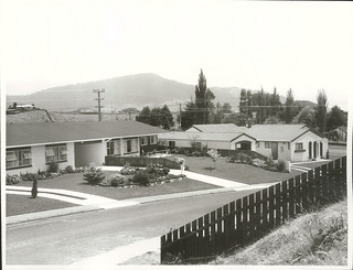 Modern family homes on the outskirts of Rotorua.