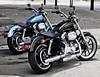Harley-Davidson XL 883 L Superlow 2015 - 9