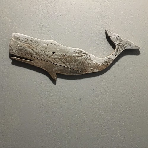 White whale wall decor