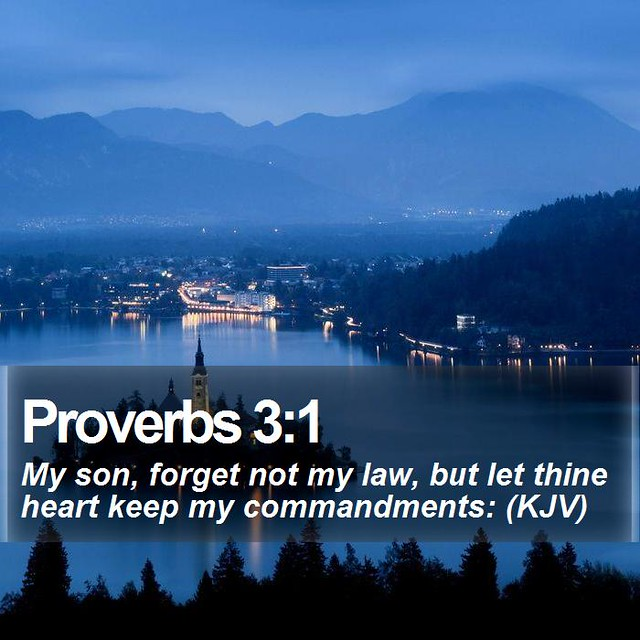 Daily Bible Verse - Proverbs 3:1
