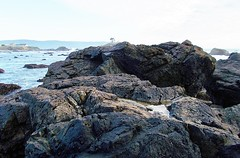 Pebble Beach geology 0228