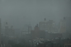 Misty Mist