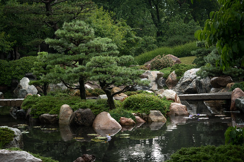 comopark garden japanesegarden minnesota saintpaul green horticulture rocks water waterfall masamimatsuda rainy cloudy