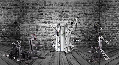 trending fitness equipment