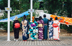 Festa do Japão II