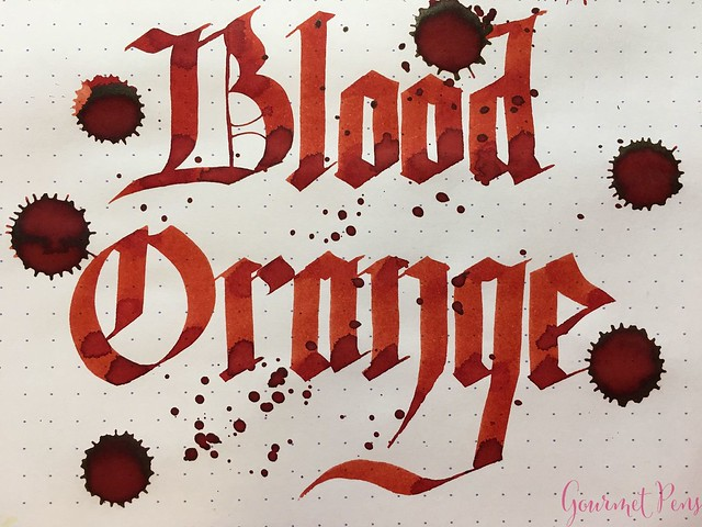 Ink Shot Review Diamine Anniversary Blood Orange @AppelboomLaren 8