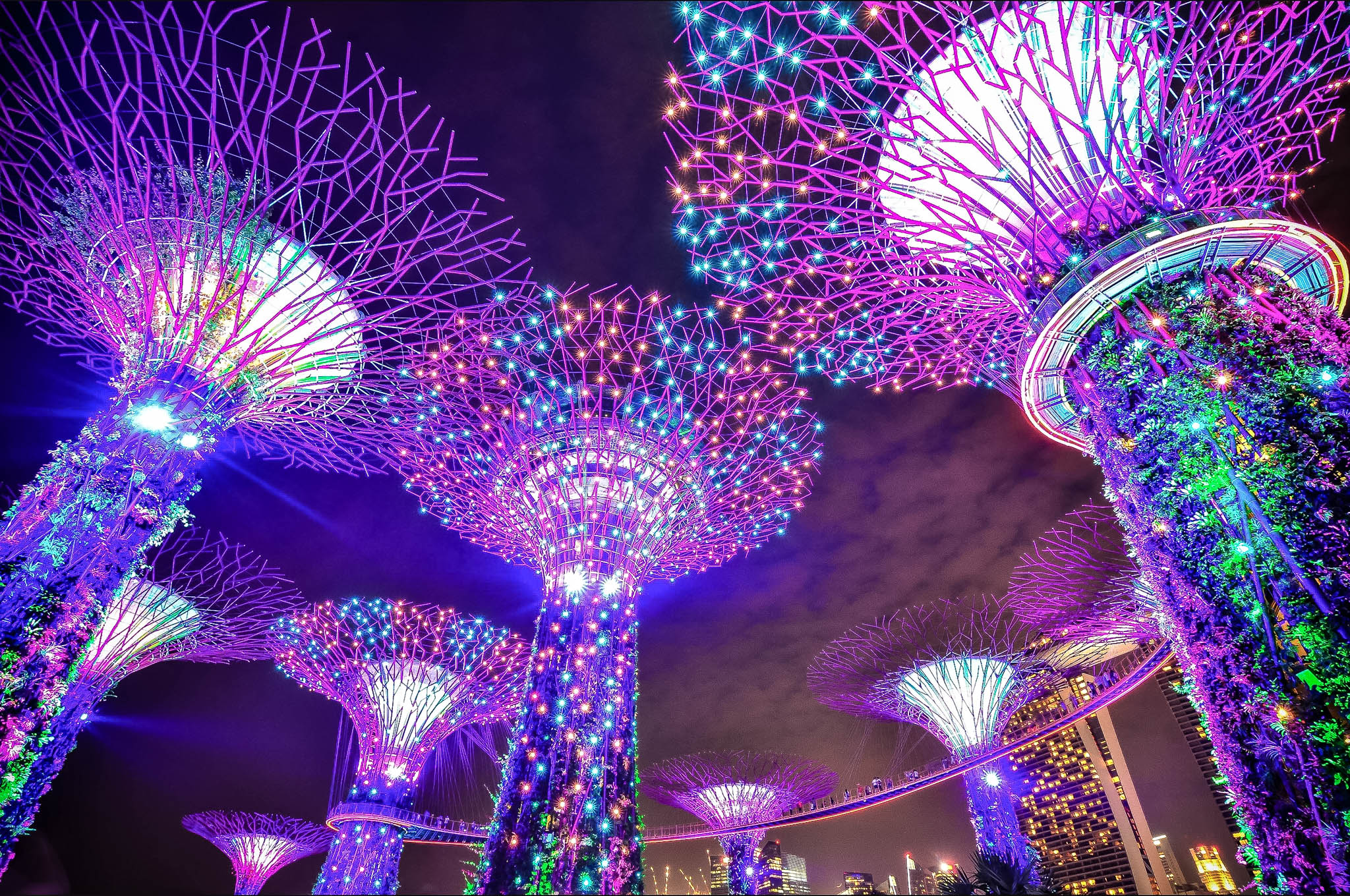 SINGAPORE 44