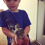 Chick magnet. by bartlewife