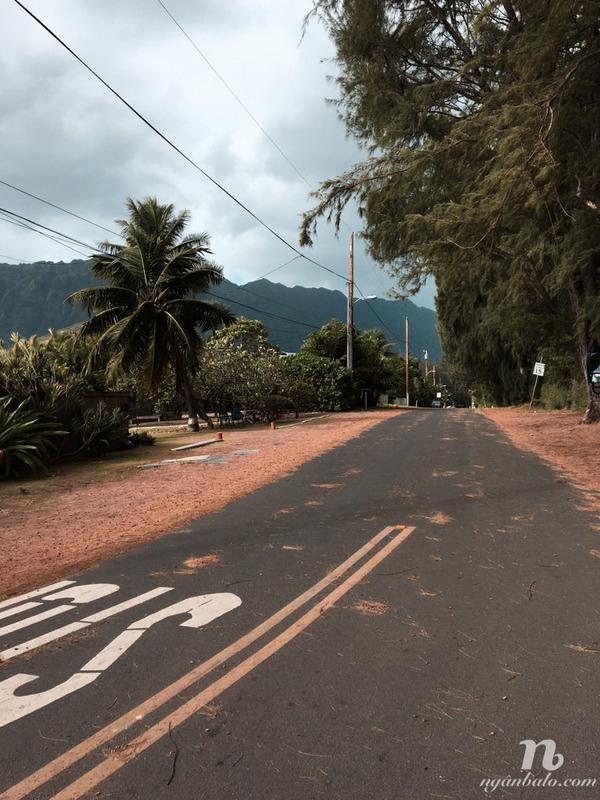 Kinh nghiệm du lịch Hawaii: OAHU - Circle Island