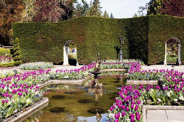 Reflecting Pond at Butchart Gardens
