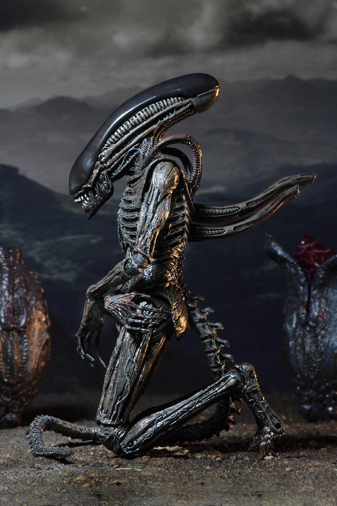 NECA 異形:聖約 【異形】Alien: Covenant Xenomorph