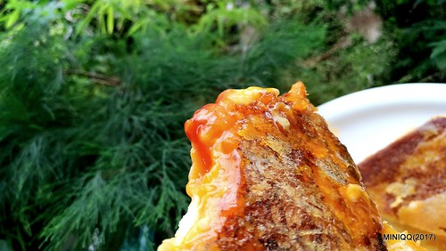 TOASTED CHEESE SANDWICH_03-P_20170618_141939_vHDR_On