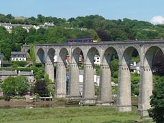 150127 Calstock Viaduct (13)