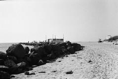 Alle spiagge bianche di Rosignano 2