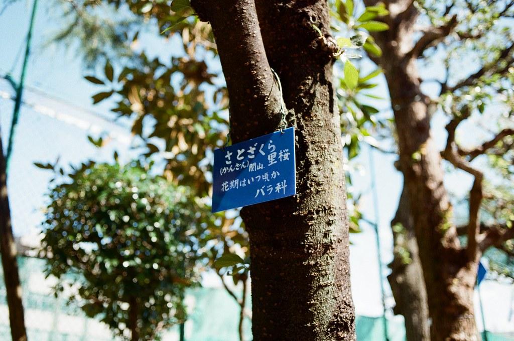 東京都荒川區東尾久 Arakawa-ku, Tokyo / Kodak ColorPlus / Nikon FM2 告示牌的顏色是一個工程圖的藍,至於這樣的顏色有沒有一個正確的說法,或許有吧?  眼前所看到的事情想找一個理由來解釋,或許不直接稱呼比較好。  旅行的最後,匆匆忙忙的紀錄,想不起來有沒有依依不捨離開,只是以為這樣的旅行會帶來不一樣的結果。  但過了很久很久,只是循環式的不斷交換,而這是該輪到誰當鬼呢?  Nikon FM2 Nikon AI AF Nikkor 35mm F/2D Kodak ColorPlus ISO200 1003-0007 2015-10-07 Photo by Toomore