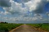 Heitelân - Homeland #48 by Hindrik S