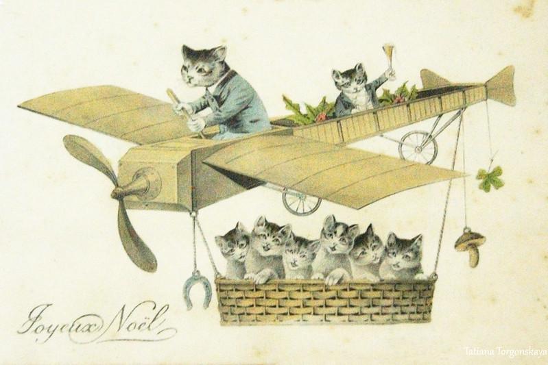 Рождественская открытка с котами