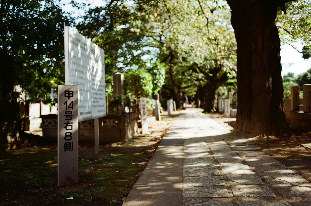 谷中靈園 日暮里谷中銀座 Tokyo / Kodak ColorPlus / Nikon FM2 谷中靈園,我是被這裡安靜的環境吸引過來的,我知道墓園本來就是這樣安安靜靜的氣氛。  我不知道耶,那時候走進來覺得午後的感覺很似曾相似,或許懷念的那個夏日也是有一段如此安靜的景象。  我懷念的我記得,我記得那個我所懷念的。  Nikon FM2 Kodak ColorPlus ISO200 Nikon AI AF Nikkor 35mm F/2D 1003-0031 Photo by Toomore