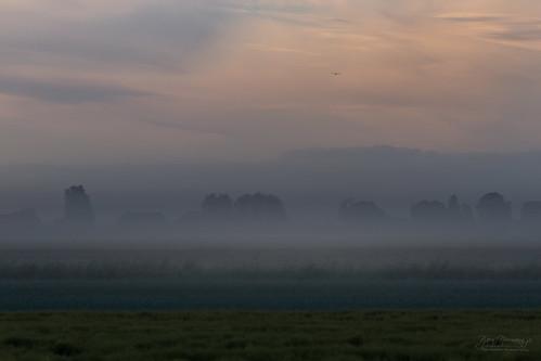 Good Morning Netherlands