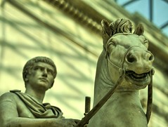 I Shall Lead You, Said Caligula's Horse