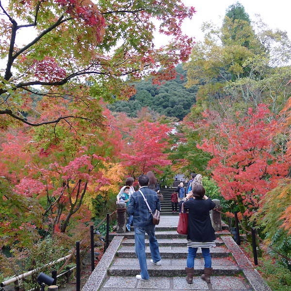 210-Kyoto