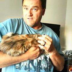 Tortoiseshell Maine Coon Kitten + Dad