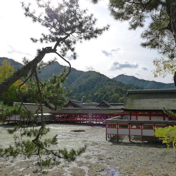 262-Miyajima
