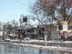 Invierno/Winter, Avenida Vitacura con Nilo Azul, Vitacura, Santiago 2017, Chile - www.meEncantaViajar.com