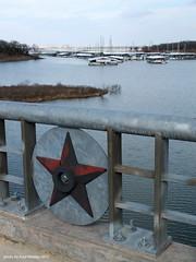 tarnished star