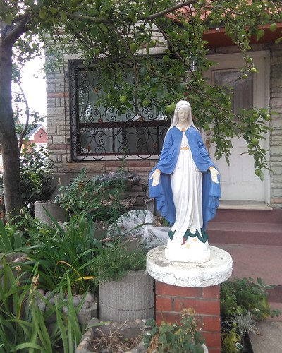 Mother Mary in the front garden #toronto #wallaceemerson #lansdowneave #virginmary #statue #garden