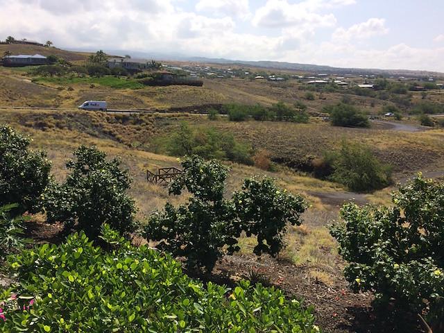 Kohala Waterfront Firewise Hazard Assessment 4/19/17