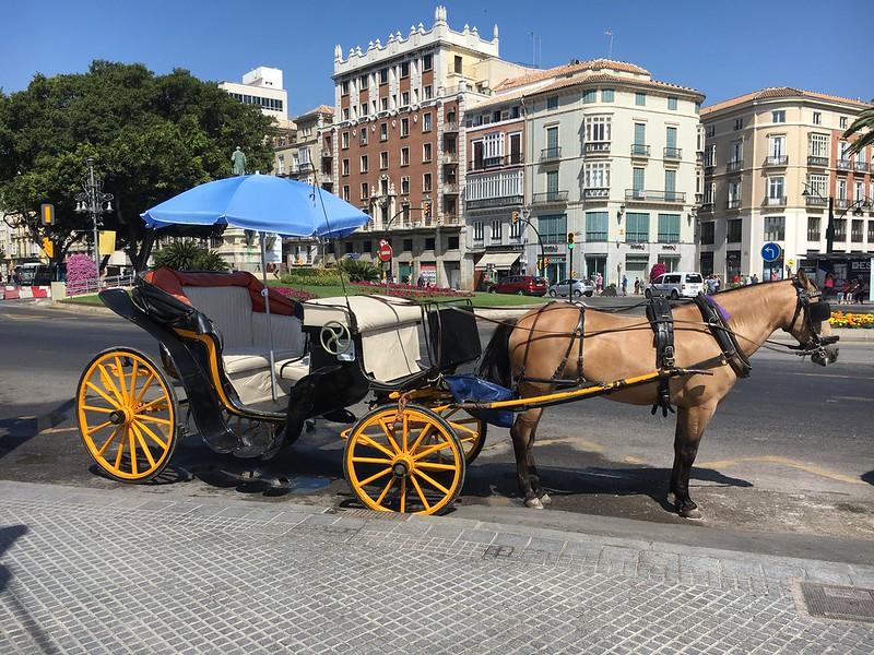 Fancy a ride ?