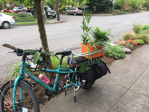 Plants by Bike