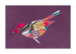 Bird #6
